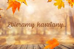 Zbieramy kasztany - jesienny spacer gr. Pszczółek